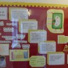 Science Information Board